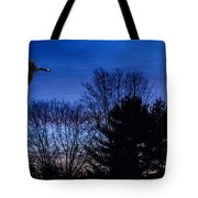 Fly By Tote Bag