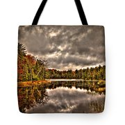 Fly Pond Marsh II Tote Bag