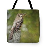 Flycatcher In Southern Missouri Tote Bag