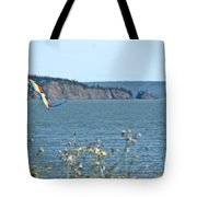 Flying A Kite On The East Coast Tote Bag