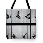 Flying Bird Tote Bag by Eadweard Muybridge