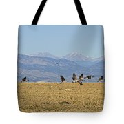 Flying Canadian Geese Colorado Rocky Mountains 1 Tote Bag