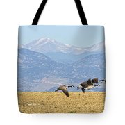Flying Canadian Geese Rocky Mountains Panorama 2 Tote Bag