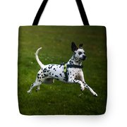 Flying Crazy Dog. Kokkie. Dalmation Dog Tote Bag