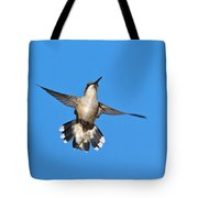 Flying Hummingbird Against Blue Sky Tote Bag