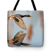 Skimming The Pond Through Cattails Tote Bag