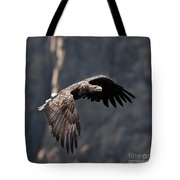 Flying Sea Eagle  Tote Bag