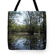 Flying Through The Mirror Tote Bag