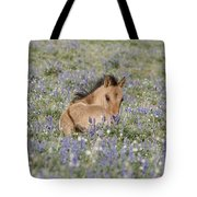 Foal In The Lupine Tote Bag by Carol Walker
