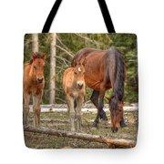 Foal Spot Tote Bag