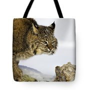 Focusing Tote Bag