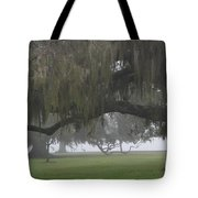 Fog In Ancient Oaks Tote Bag