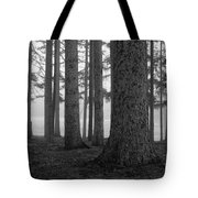 Fog Within The Pines  Bw Tote Bag