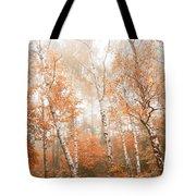 Foggy Autumn Aspens Tote Bag