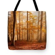 Foggy Beech Forest Tote Bag