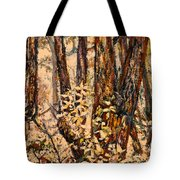 Foggy Forest Edge Tote Bag