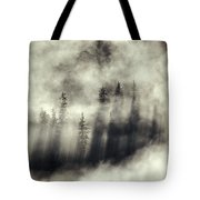 Foggy Landscape Stephens Passage Tote Bag by Ron Sanford