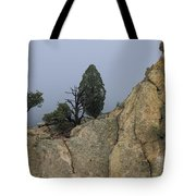 Foggy Morning Tote Bag by Richard Smith