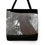 Foggy Morning Sequoias Tote Bag