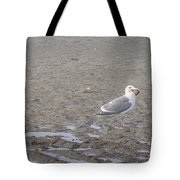 Foggy Seabird Seagulls Brunch Tote Bag