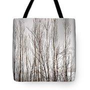 Foggy Winter Tree Fence 13271 Tote Bag
