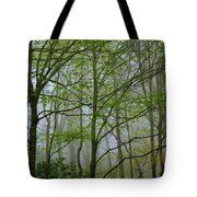 Foggy Woods Tote Bag
