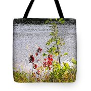 Foliage Along Iowa River Iowa City Ia Tote Bag