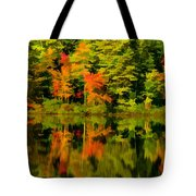 Foliage In New Hampshire Tote Bag