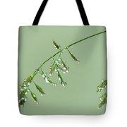 Foliage On Mount Pilatus Tote Bag