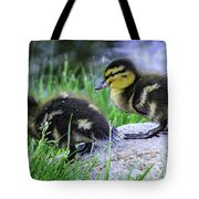 Follow The Leader Ducky Style Tote Bag