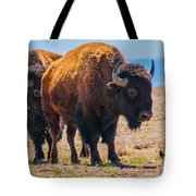 Follow The Leader Tote Bag by Tom Potter