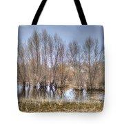 Folsom Dried Pond  Tote Bag