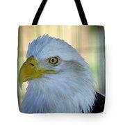 Fontana Eagle Portrait 4 Tote Bag
