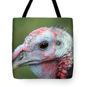Fontana Turkey Portrait Tote Bag