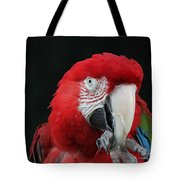 Foot Hold Tote Bag