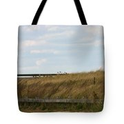 Footbridge Through The Dunes Tote Bag