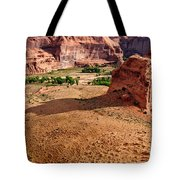 Footprints In The Sand  Canyon Dechelly Tote Bag