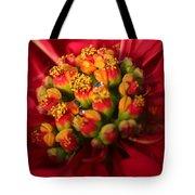 For Christmas Tote Bag