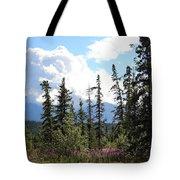 For Spacious Skies Tote Bag