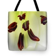 For The Love Of Lilies 1 Tote Bag