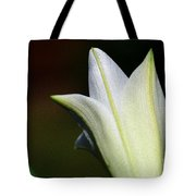 For The Love Of Lilies 9 Tote Bag