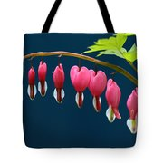 Bleeding Hearts For Your Love Tote Bag