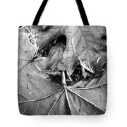 Foraged Insights Tote Bag