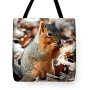 Foraging Through The Autumn Leaves Tote Bag