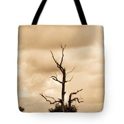 Foreboding Clouds Over Ghost Tree 1 Tote Bag