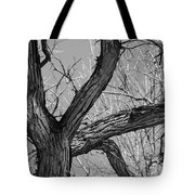 Forest #2 Tote Bag