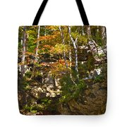 Forest Above The Cave Tote Bag