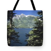 Forest And Lakes Lanin National Park Tote Bag