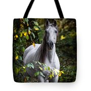 Forest Beauty Tote Bag