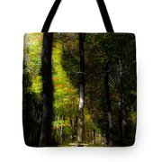 Forest Bench Tote Bag